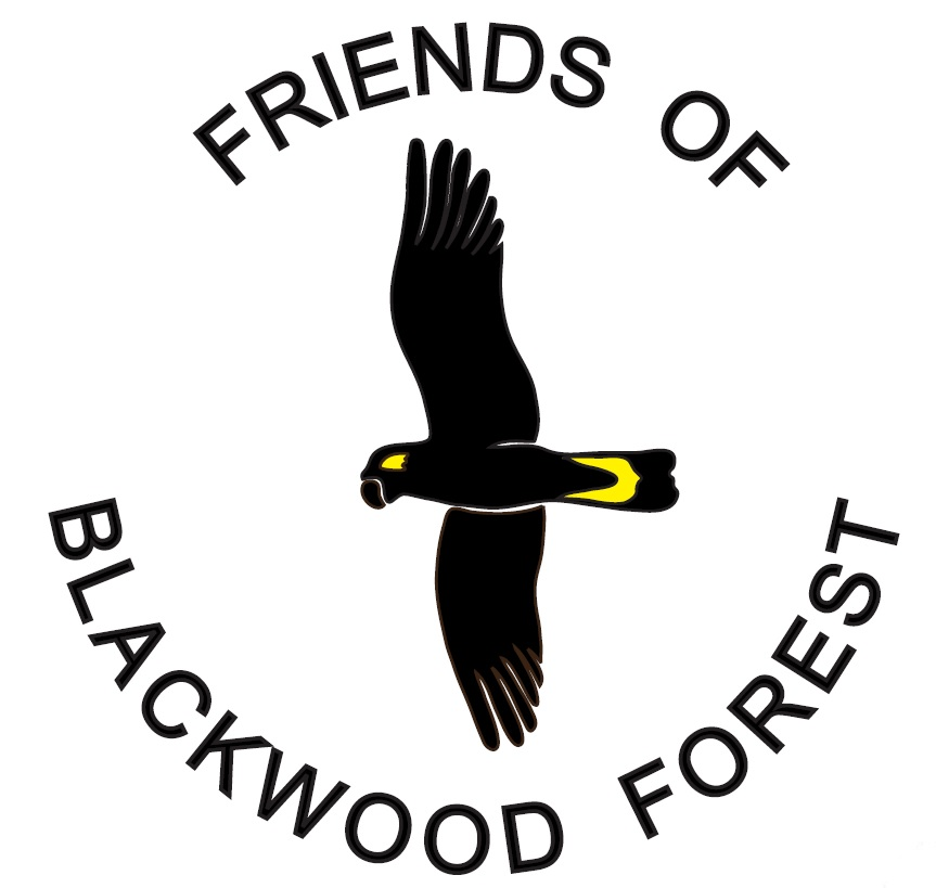 Friends of Blackwood Forest